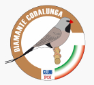 Club Diamante Codalunga Italia
